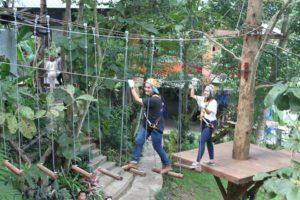 Mae Rim Attraction - Phoenix Adventure Park