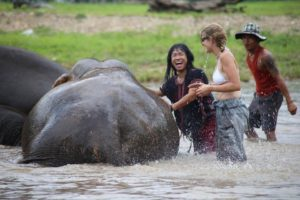 Mae Taeng Attraction - Happy Elephant Home
